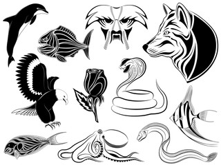 Set of various tattoos