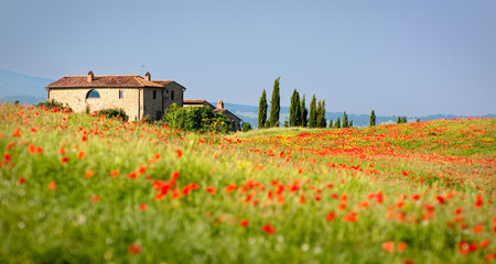 rotes Italien Fototapete