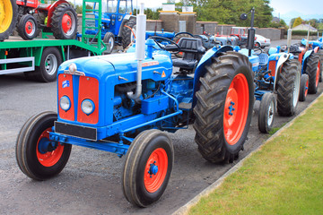 Old Blue Tractors