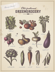 vintage greengrocer's placard with different vegetables