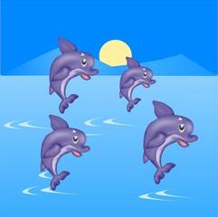 delfini show