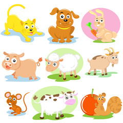 pet cartoon set