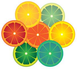lime Circles