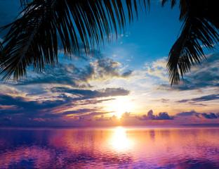 Branch Palm Beach
