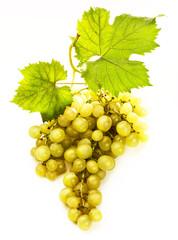 uva con bicchiere di vino