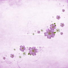 Beautiful pink floral background