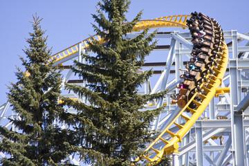 Divo Roller Coaster