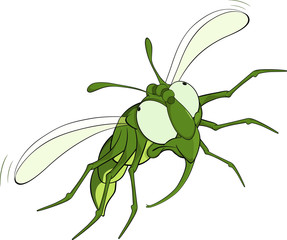 The scared green fly.Cartoon