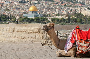 The Dome of the rock in Jerusalem