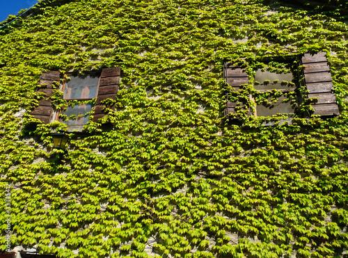 Rivestimenti per il bagno foto design mag piastrelle verdi
