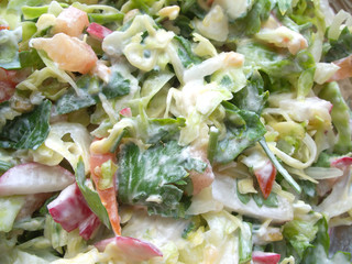 Fresh raw vegetables salad with sour cream close-up