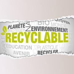 vecteur, mots recyclable