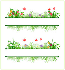 Frame with flowers and grass