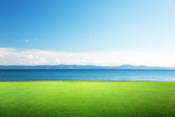 Fototapete - green grass and caribbean sea