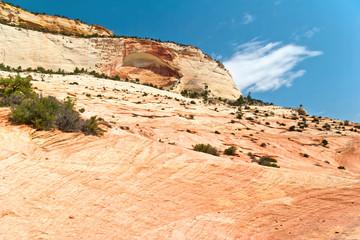 Slopes of Zion canyon. Utah. USA.