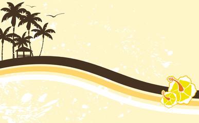 hawaiian tropical beach background4