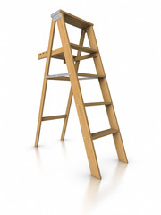 3D Step ladder.