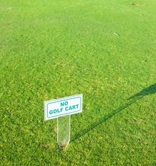 Heavenly Green Tee Spot