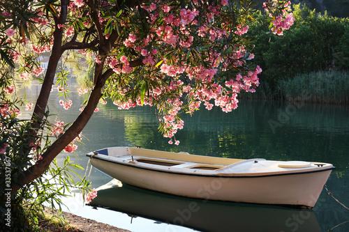 Лодка на берегу зеленого озера  № 2493047 загрузить