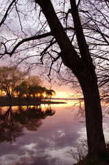 sunset in the evening spring lake