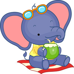 Summer Elephant