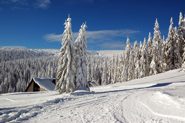Winter landscape with snow in mountains, Slovakia