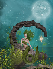 Photo sur Aluminium Mermaid mermaid