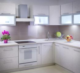 Modern Interior of the Kitchen room