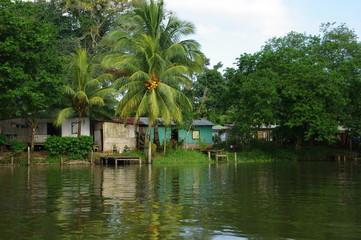 Sabalos Nicaragua