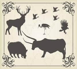 Vintage set of animals into frame
