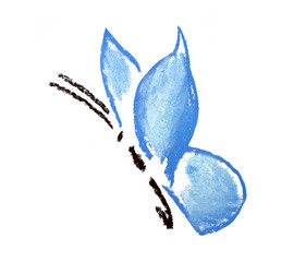 blue butterfly simple illustration