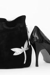 Women's handbag and shoes.