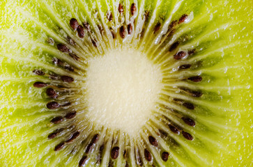 kiwi close uo