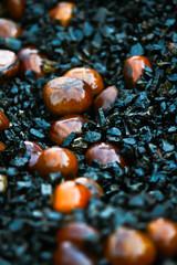 chestnut of china