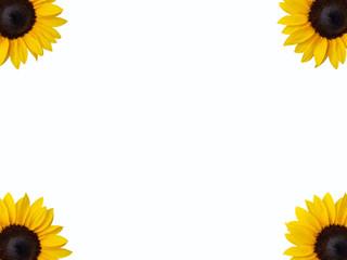 Sunflowers frame