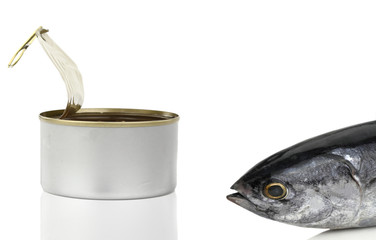 Tuna fish in front of the can