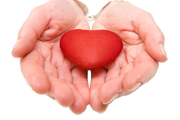 red heart in a woman hands. isolated on white.