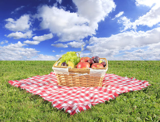 Spoed Fotobehang Picknick Picnic at meadow with perfect sky background