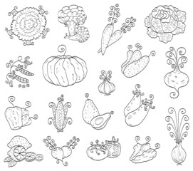 Doodle fruits, vegetables