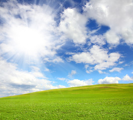 green hill with grass under sky