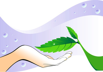 hand with a green leaf