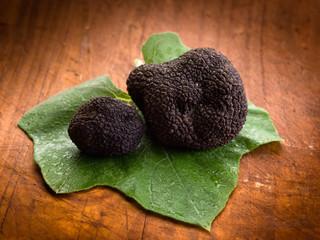 black truffle over leaf on wood background