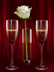 champagne and white rose
