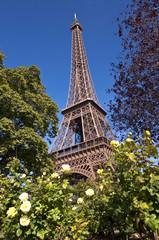La tour Eiffel - Paris France