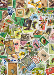 Insect Postage Stamps