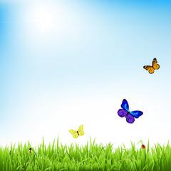 Zelfklevend Fotobehang Vlinders Nature Landscape