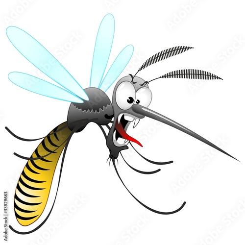 Quot zanzara tigre cartoon funny mosquito moustique vector