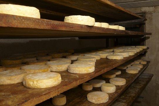 fromage de munster