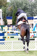 Equastrian competitor jumps from the back