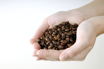 coffee beans in the women's hands, isolated